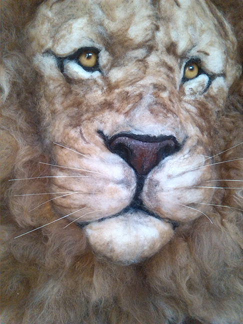 Lion (Close up)